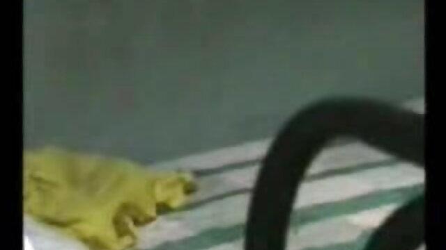 डोनाल्ड ट्रम्प ने अपने उत्साही फुल सेक्सी हिंदी मूवी प्रशंसक के साथ मजाक किया है
